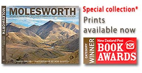 Molesworth Station Book canvas photo art prints