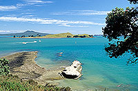 Brown's Island, Auckland