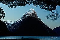 Milford Sound just before dawn canvas print