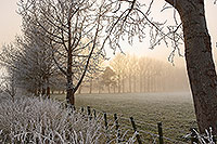 Early morning hoar-frost canvas print